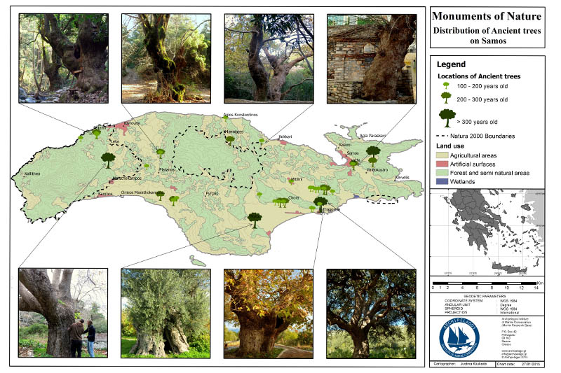 ancient_trees_map