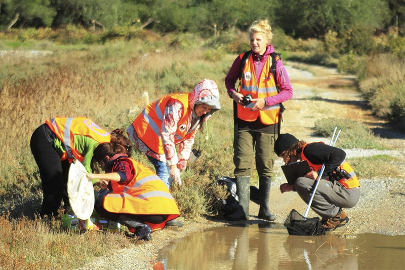 freshwater_ecosystems (1)