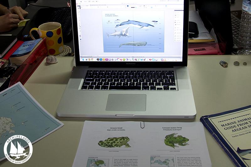 media_desk