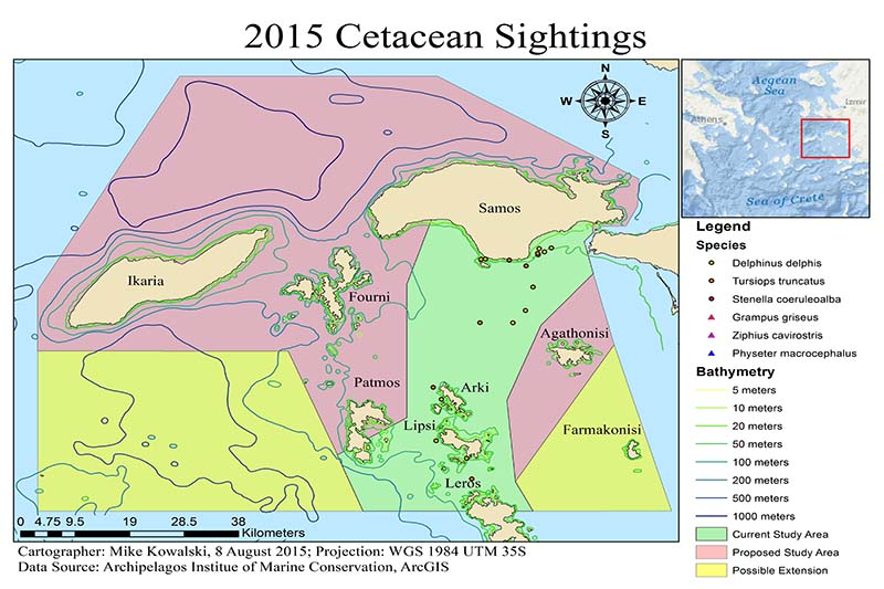 2015 cetacean sightings