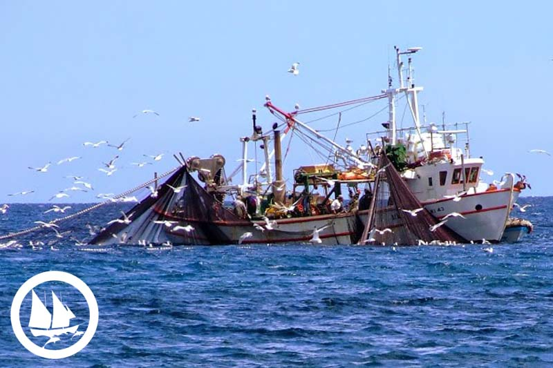 iuu fisheries