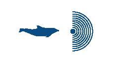 Common Bottlenose Dolphin Icon (6)