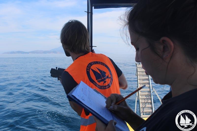 boat-survey-2-21_10_16