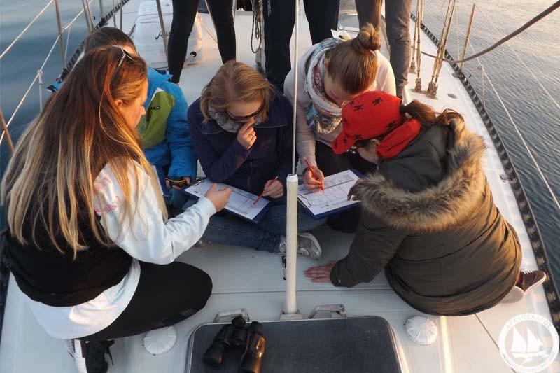 boat-survey-3-25_11_16