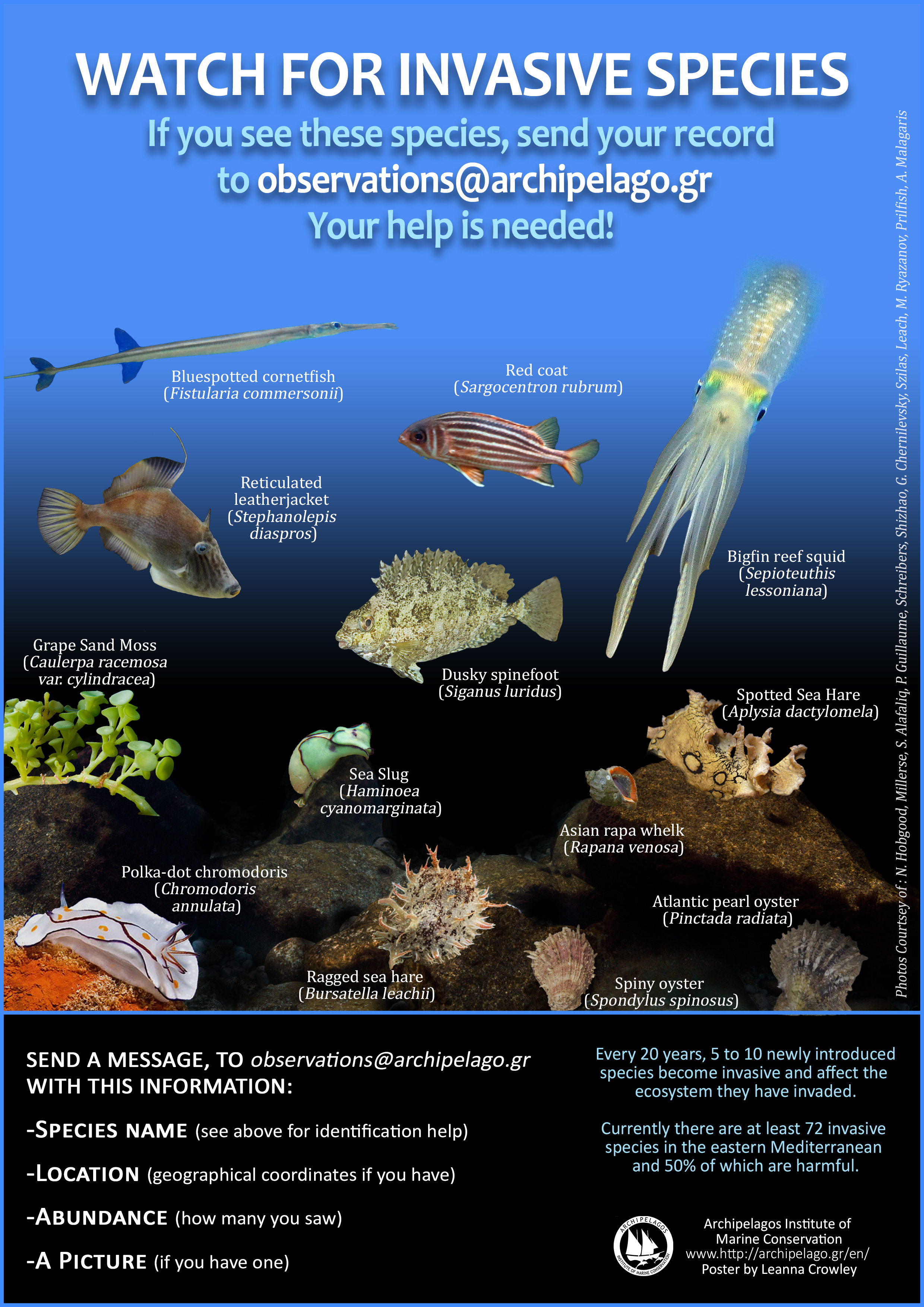 Aquatic Invasive Species   Whatcom Boat Inspections