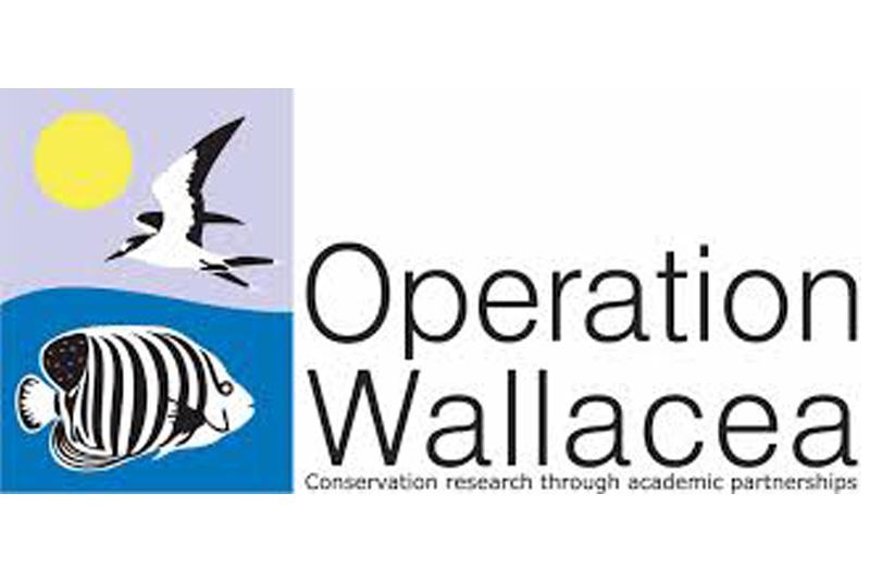 Opwall-logo