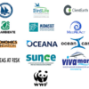 Environmental NGOs call on an ambitious and science-based multi-annual management plan for small pelagic stocks in the Adriatic Sea