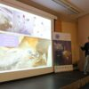 Archipelagos' participation at the 6th Mediterranean Conference on Marine Turtles in Porec, Croatia