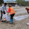 Following the Alarming Increase in Dead Dolphins along the North Aegean Coast